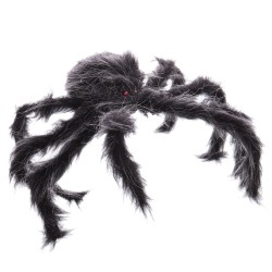 Araignée 15 x 4 x 50 cm