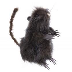 Rat brun 7 x 9 x 15 cm
