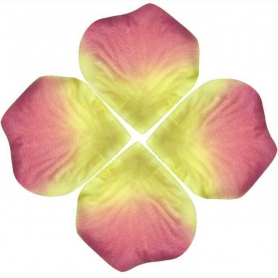 Petale Fleurs