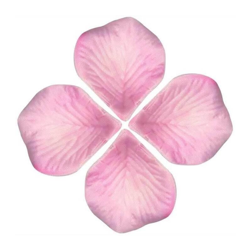Petales de fleurs Roses