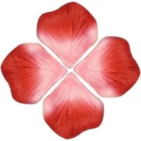 Petales de Fleurs Rouge