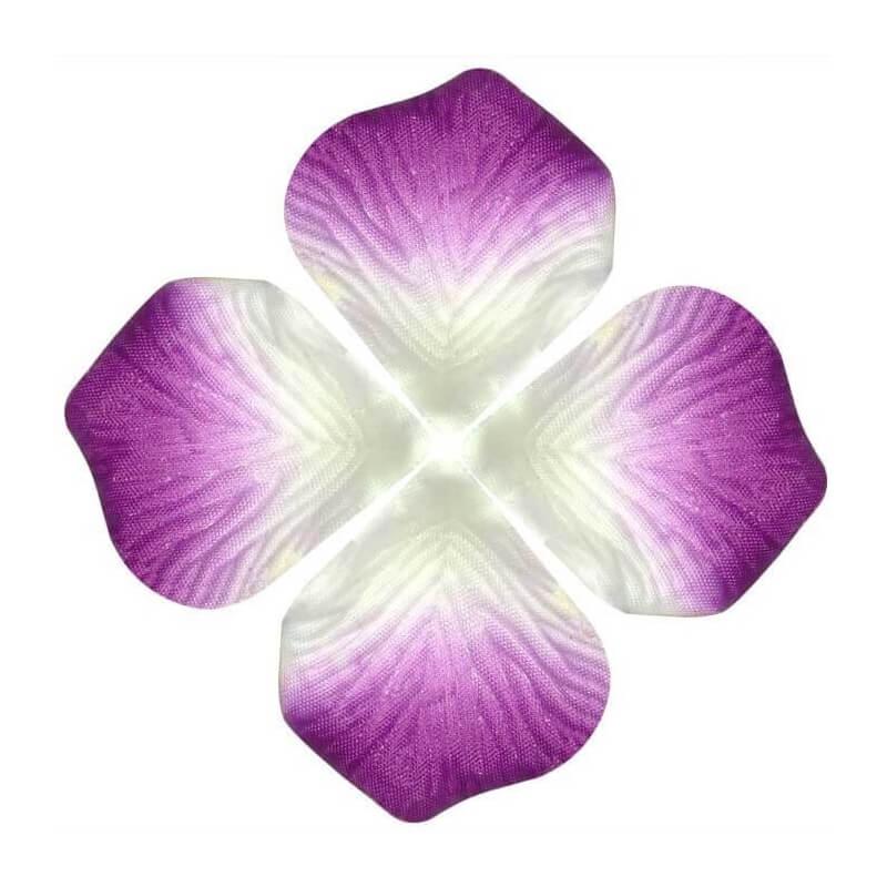 Petales fleurs pas cher for Fleurs envoi pas cher