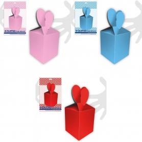 Boîtes en Carton pour des Cadeaux